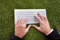 Businessman Typing On Keyboard Over Grass - PhotoDune Item for Sale