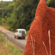 Huge Red Ant Hill with 4x4 Driving By - VideoHive Item for Sale
