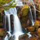 Waterfall in forest - PhotoDune Item for Sale