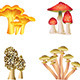 Mushrooms Isolated on White Vector Set - GraphicRiver Item for Sale