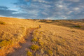 trail through Colorado prairie - PhotoDune Item for Sale