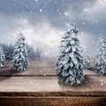 Wooden Winter Landscape - PhotoDune Item for Sale
