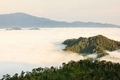 Landscape forest sea fog. - PhotoDune Item for Sale