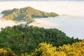 View point wetlands sea fog on the hill. - PhotoDune Item for Sale
