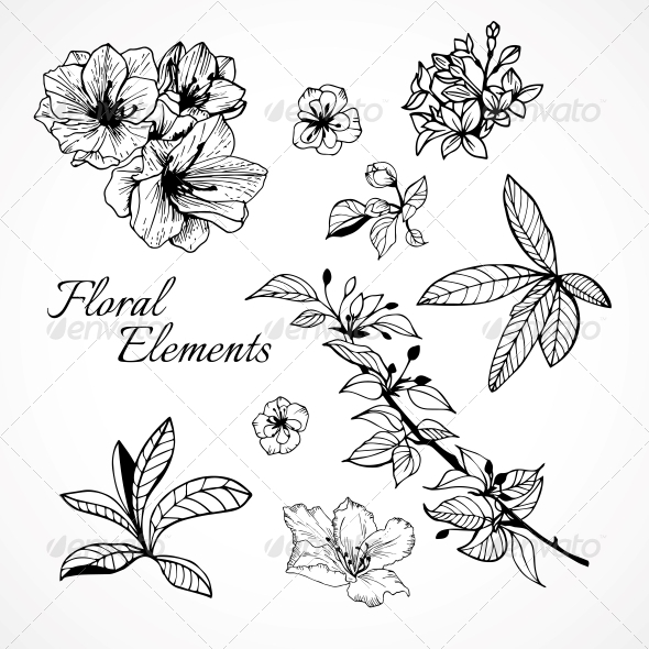 GraphicRiver Set of Floral Elements 6329116