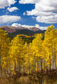 Colorado Rocky Mountains Fall Landscape - PhotoDune Item for Sale