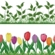 Flowers and Grass Set - GraphicRiver Item for Sale