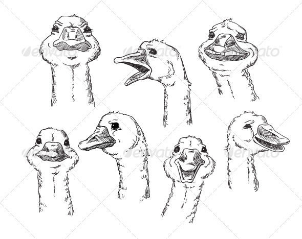 GraphicRiver goose with Different Facial Expressions of Human 6344700