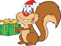 Happy Squirrel With Santa Hat Holding A Gift  - PhotoDune Item for Sale