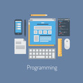 Web and HTML programming flat illustration - PhotoDune Item for Sale