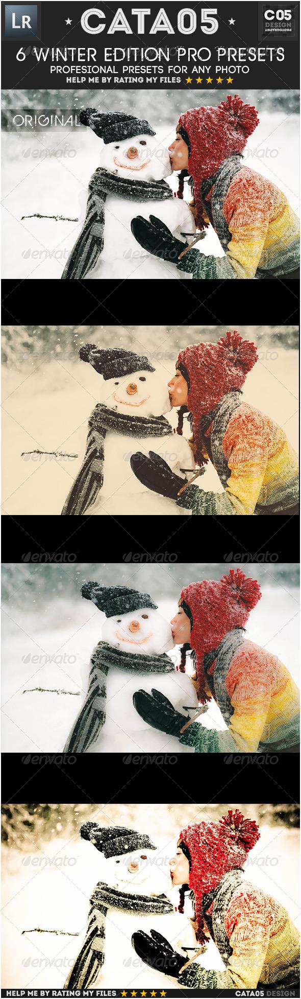 GraphicRiver 6 Winter Edition Pro Presets 6363312
