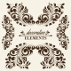 Vintage Floral Elements. - GraphicRiver Item for Sale
