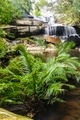 Beautiful forest waterfall in spring season. - PhotoDune Item for Sale