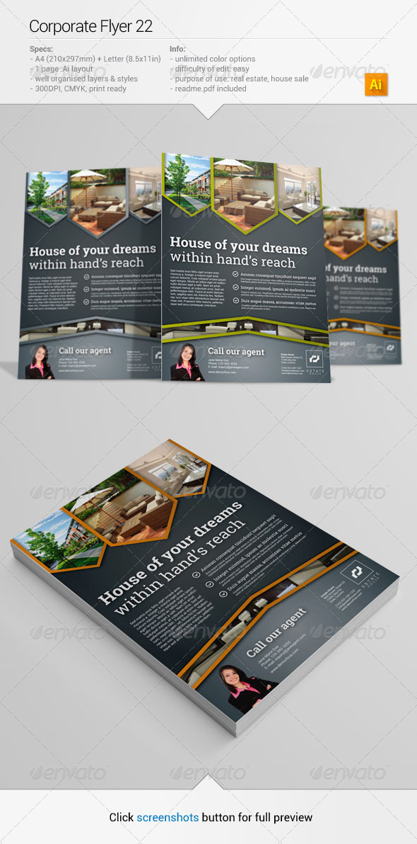 GraphicRiver Corporate Flyer 22 6368955