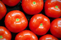 Delicious tomatoes - PhotoDune Item for Sale