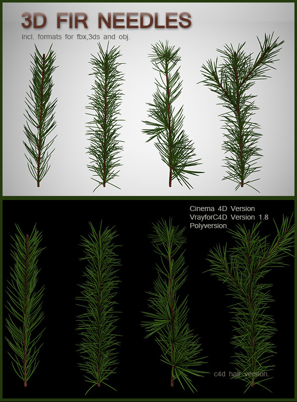 3DOcean Fir Needles 6379403