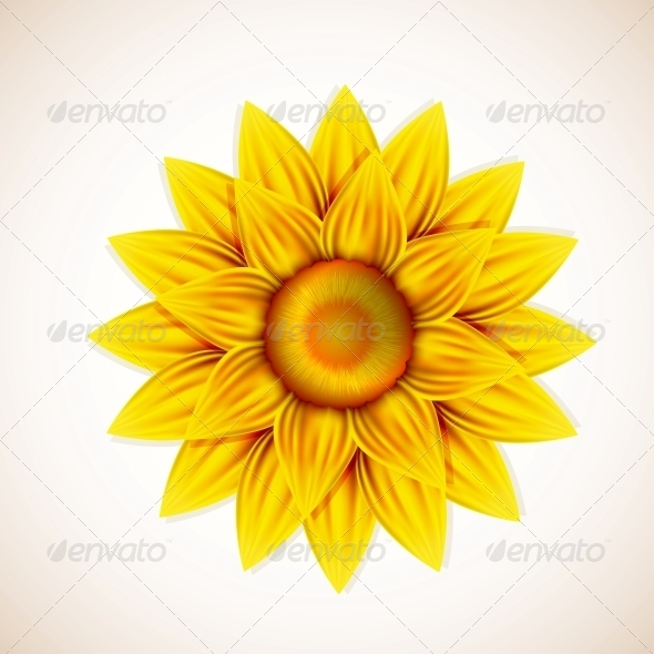 GraphicRiver Vector Flower 6381473