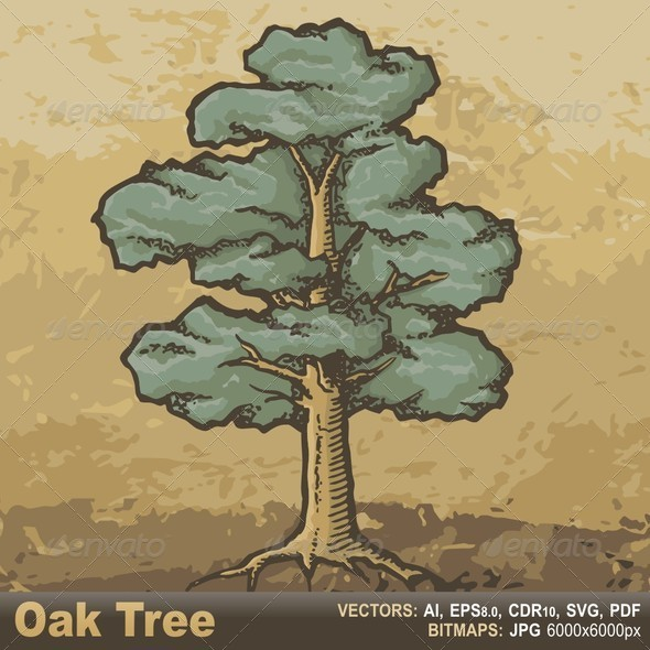 GraphicRiver Oak Tree Sketch 6387286