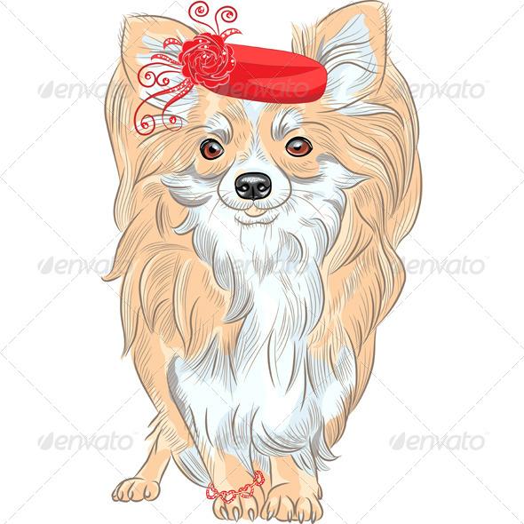 GraphicRiver Fashion Dog Chihuahua Breed Smiling 6406873