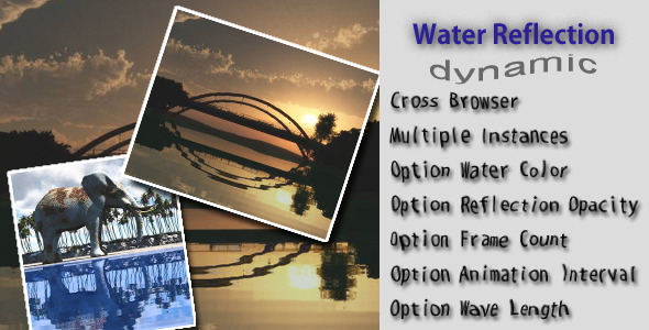 CodeCanyon Water Reflection 6419061