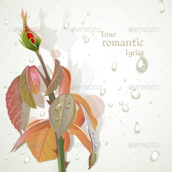 GraphicRiver Rosebud 6426186