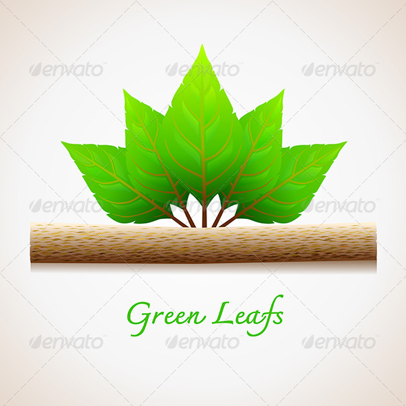 GraphicRiver Green Leaves 6426890