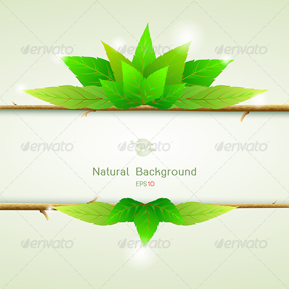 GraphicRiver Natural Green with Paper for Background 6426933