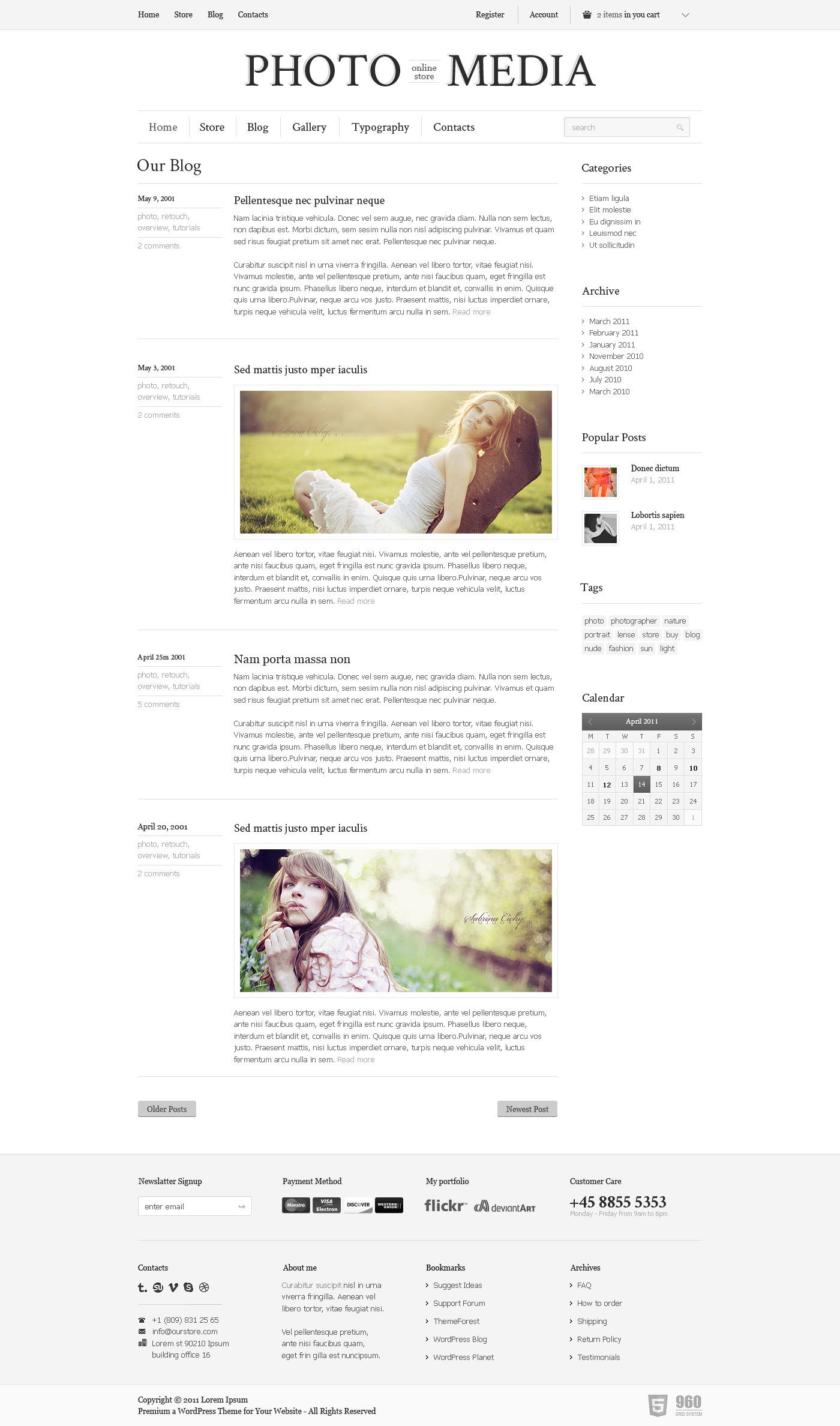 Phomedia Wordpress Theme - A WP E-Commerce theme - Blog page overview