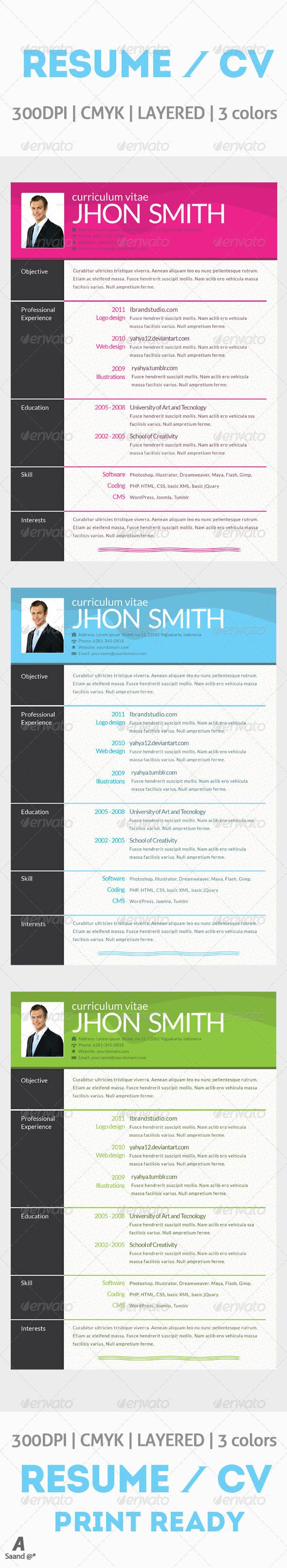 GraphicRiver Resume Curriculum Vitae 6420407