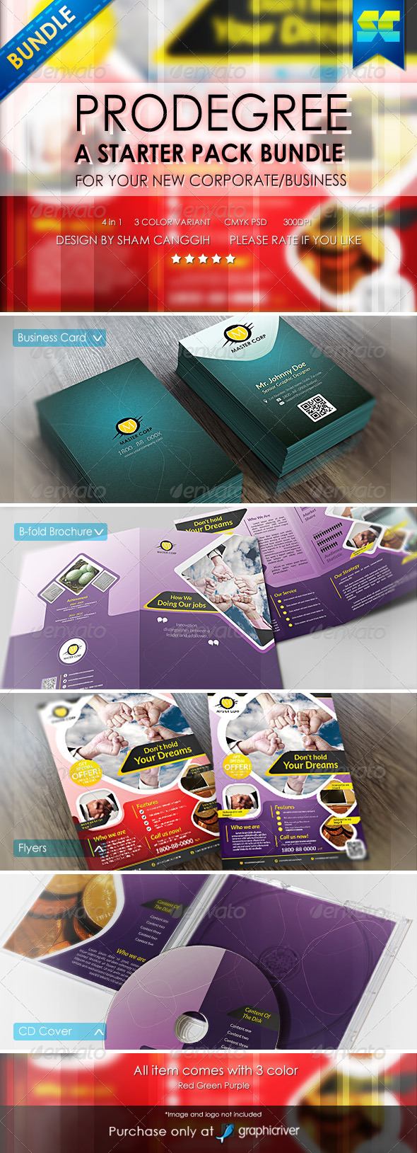 GraphicRiver Prodegree Corporate Business Starter Pack Bundle 6382526