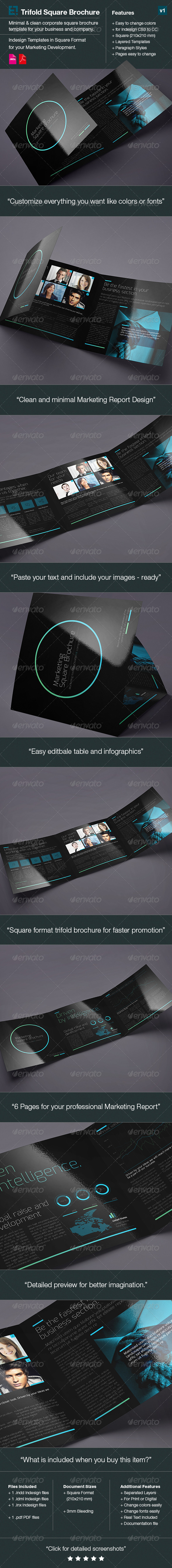 GraphicRiver Square Trifold Brochure DoubleInk 6420926