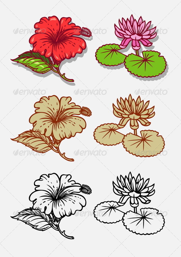Flowers Illustration - Flowers & Plants Nature