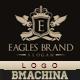 Eagles Brand Logo Template - GraphicRiver Item for Sale