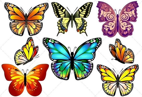 GraphicRiver Set of Colorful Realistic Isolated Butterflies 6452377