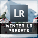 16 Winter Edition Pro Presets - GraphicRiver Item for Sale