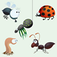 Funny insect set - GraphicRiver Item for Sale