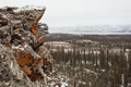 Orange lichen rock taiga Lake Laberge Yukon Canada - PhotoDune Item for Sale