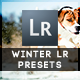13 Winter Edition Pro Presets - GraphicRiver Item for Sale