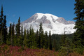 Mount Rainier, WA - PhotoDune Item for Sale
