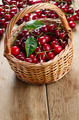 Basket of organic Cherries - PhotoDune Item for Sale