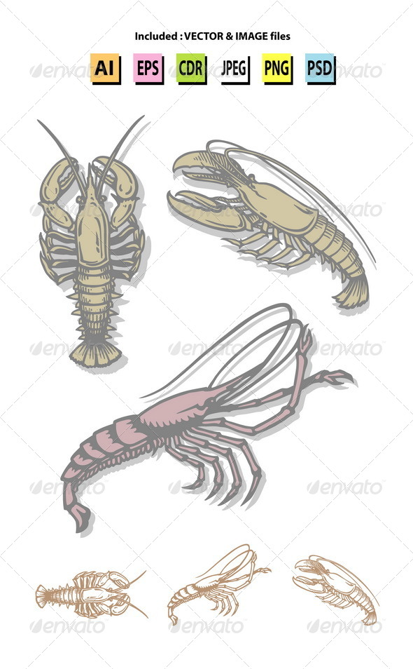 GraphicRiver Lobster and Prawn Sketches 6503374