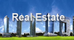 Real Estate