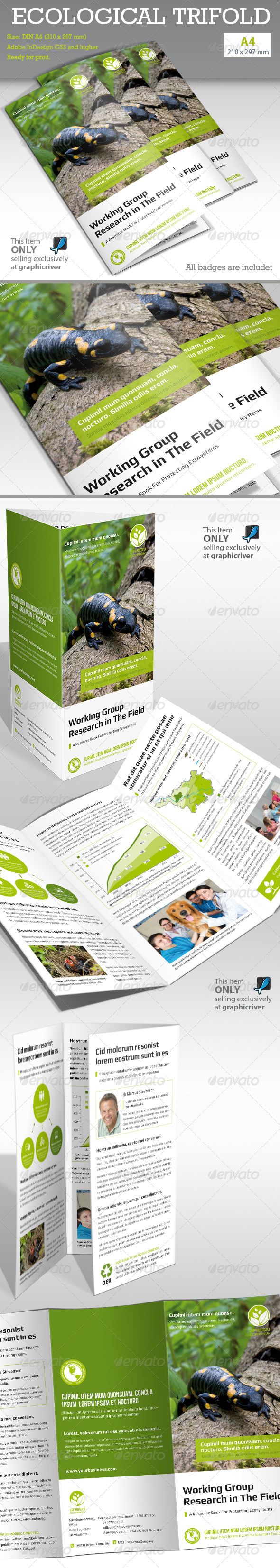GraphicRiver Ecological Report Tri-fold 6507512