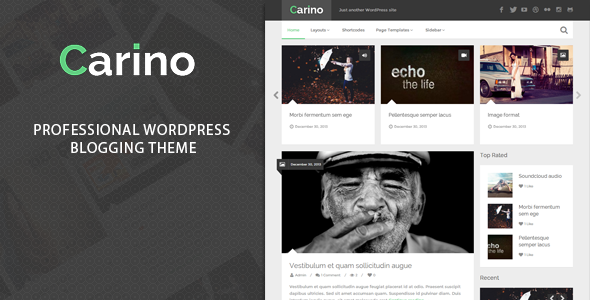 ThemeForest Carino Retina Responsive Wordpress Blog Theme 6509806