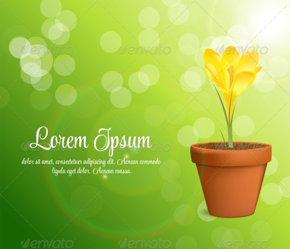 GraphicRiver Vector Illustration of Crocus Flower 6510056