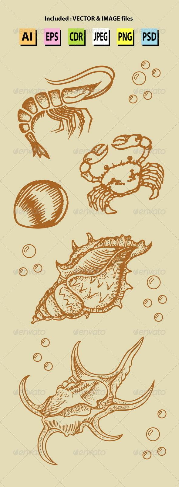 GraphicRiver Vintage Sea Lives Sketch 6513794
