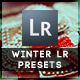 11 Winter Edition Pro Presets - GraphicRiver Item for Sale
