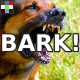 Dog Warning Bark
