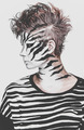 zebra girl - PhotoDune Item for Sale