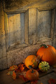 Pumpkins, broom and gourds at the door - PhotoDune Item for Sale
